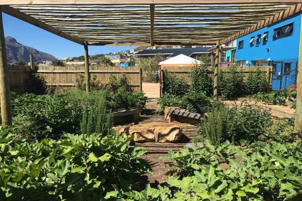 Food gardening course 2