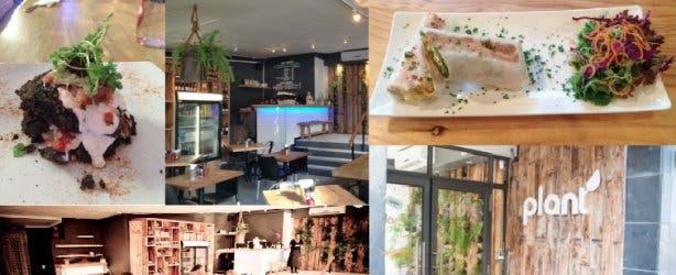 Plant glutenvrij Kaapstad