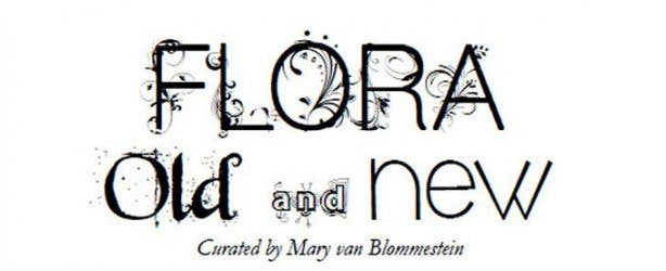 flora old and new irma stern  3