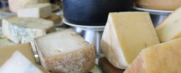 Cheese at Hermanuspietersfontein food market