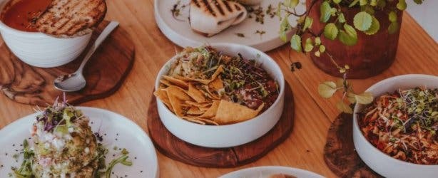 Wildsprout_Kenilworth_Cape_Town_meal