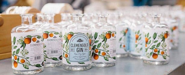 ClemenGold Gin - 1