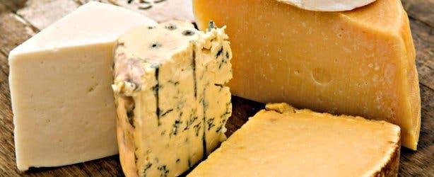 SA Cheese Festival cheese