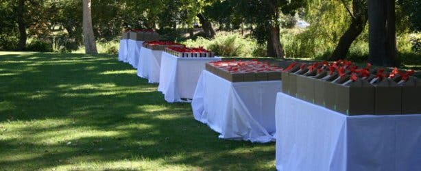 Corporate Picnic Functions by Mustard Catering