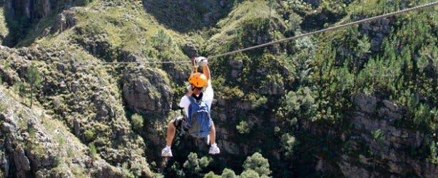 Cape Canopy Tour Adventure Activity