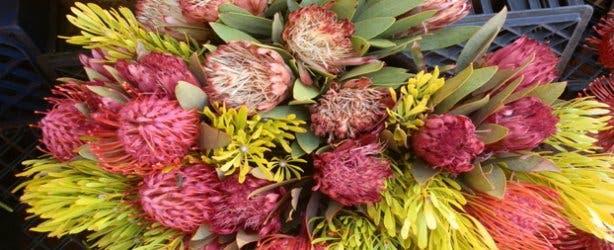 Adderley Flower Market