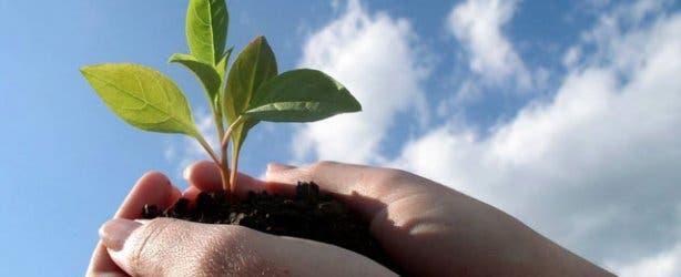 lifestyle eco fair eco friendly