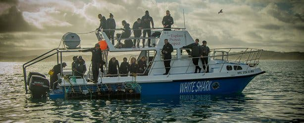 WSDC Boat 2