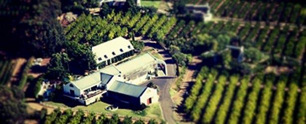 marianne wine estate 4
