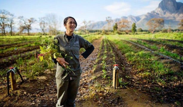 Boschendal Food Growing Workshop