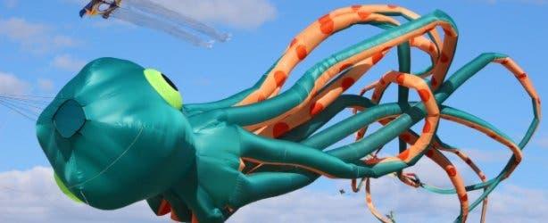 Kite Festival 2021_Octopus