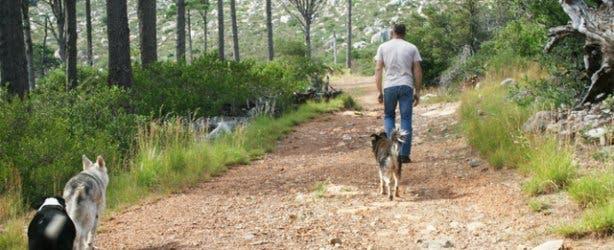 Hi-Tec Deer park | Cape Town Hikes