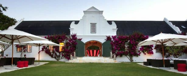 Peter Falke Winer  Stellenbosch
