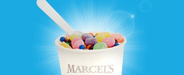 Marcel's Frozen Yoghurt Blizzard