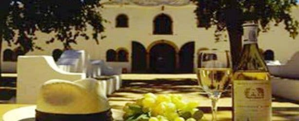 Wining And Dining In The Cape Winelands