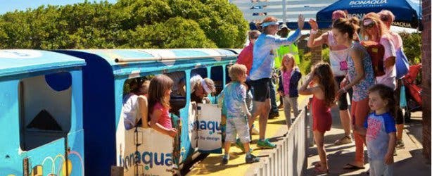 The Blue Train Park for Kids in Cape Town