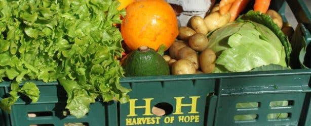 Abalimi Bezekhaya Vegetable Box