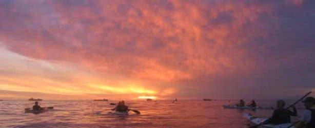 kayak-new