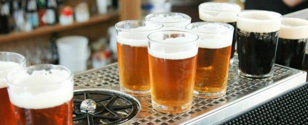 Super Cool Beer Tour Beer Tasters