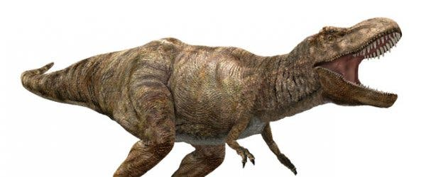 Tyrannosaurus Rex at Dinosaur Exhibition