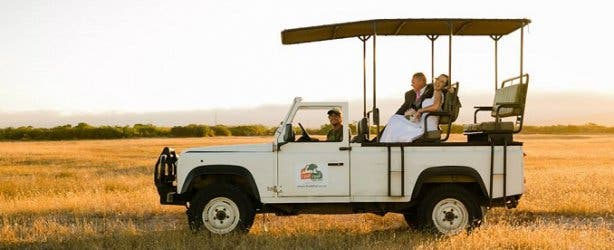 Game Drive at Thali Thali Game Lodge West Coast
