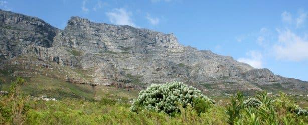 Hi-Tec Deer park   Cape Town Hikes