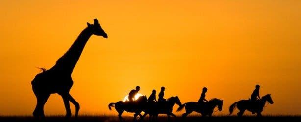 Horse back safari Aquila Game Park
