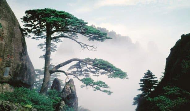 A Fairyland On Earth Exhibition 2