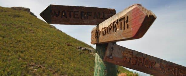 Fernkloof hike   Fynbos