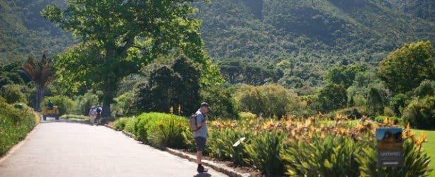 Kirstenbosch Hi Tec 9