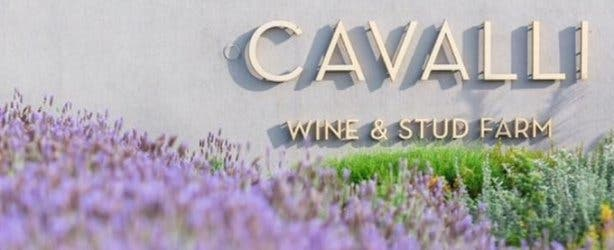 Cavalli Wine Estate and Stud