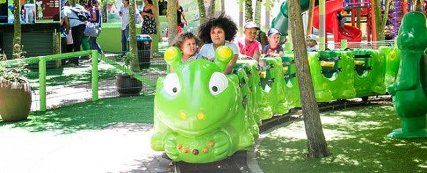 Bugz Playpark in Cape Town