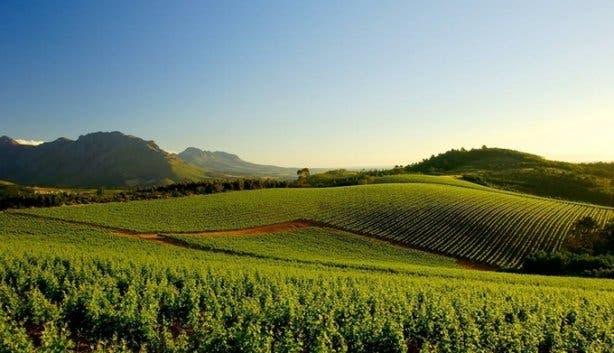 Knorhoek Wine Farm Wedding Venues