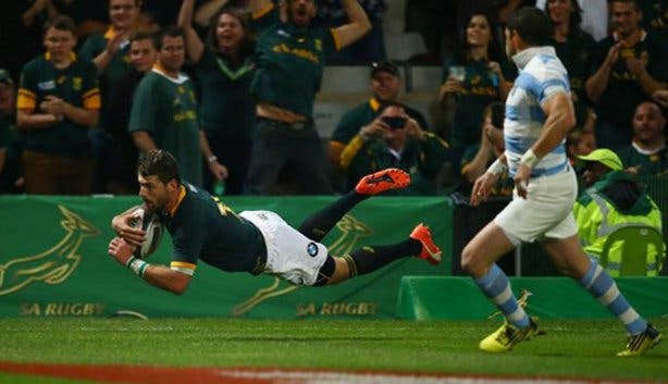 Springboks Rugby World Cup 3