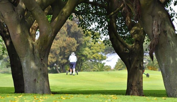 Rondebosch Golf Club 2