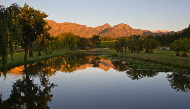 Peter Falke Wine Farm Cape Winelands