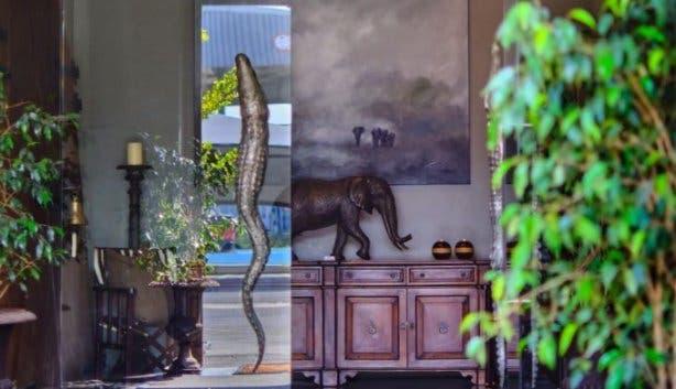 Donald Greig Gallery