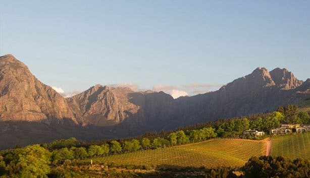 cape_town_experiences_wine