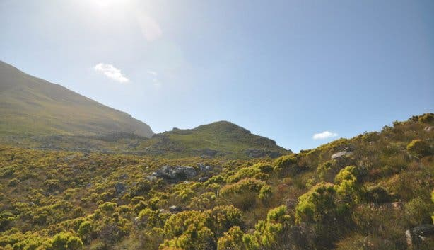 Chapman's Peak Hike | Cape Town Hikes