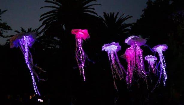 december events spier festival of lights