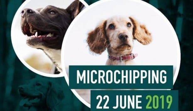 pet_microchipping
