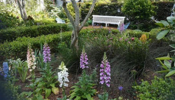 Open_Gardens_Constantia_3