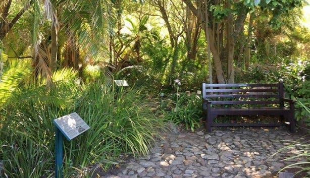 Kirstenbosch - 7