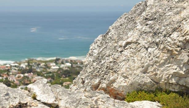 Fernkloof hike | fynbos | Hermanus