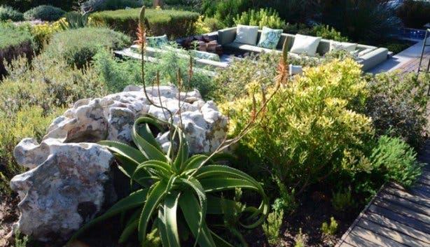 Open_Gardens_Constantia_2