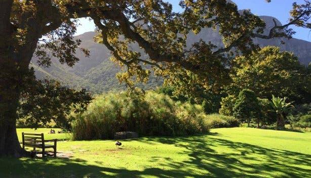 Kirstenbosch - 10