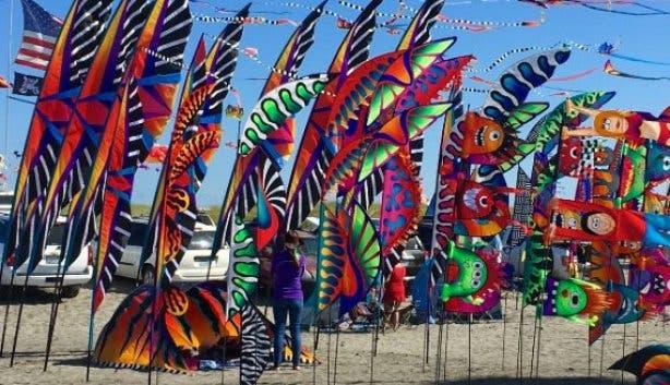 Kite Festival 2021_butterfly kites
