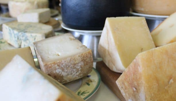 Cheese at Hermanuspietersfontein food market