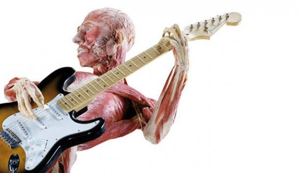 Rocking body worlds