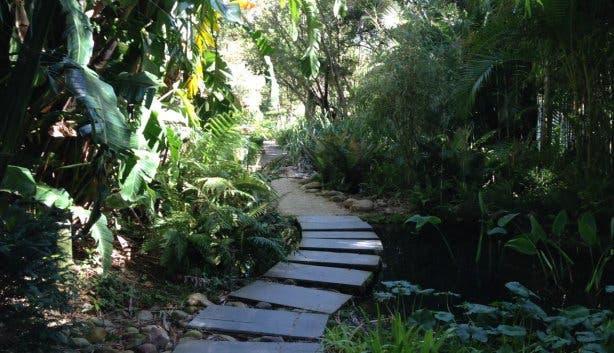 Botanischer Garten Stellenbosch d
